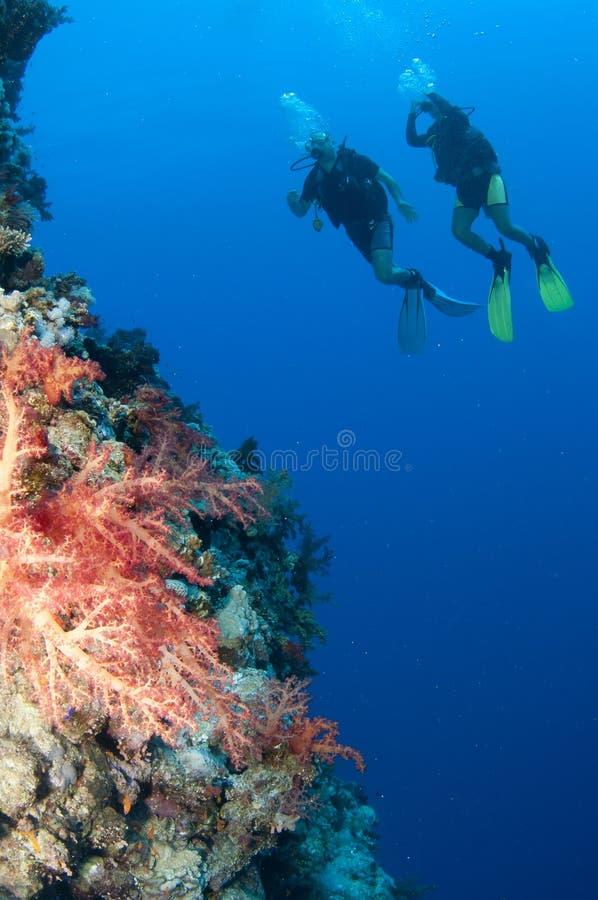 Twee scuba-duikers genieten samen van een gelukkige duikvlucht royalty-vrije stock afbeeldingen