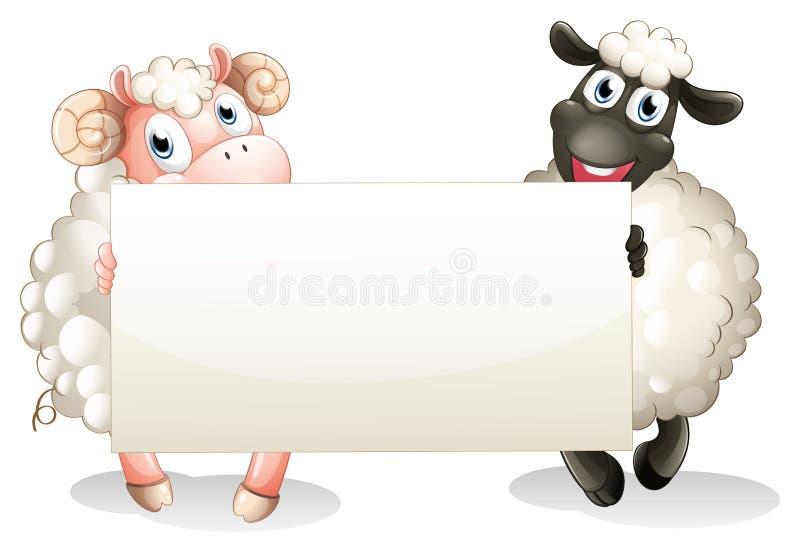 Twee sheeps die een lege banner houden royalty-vrije illustratie