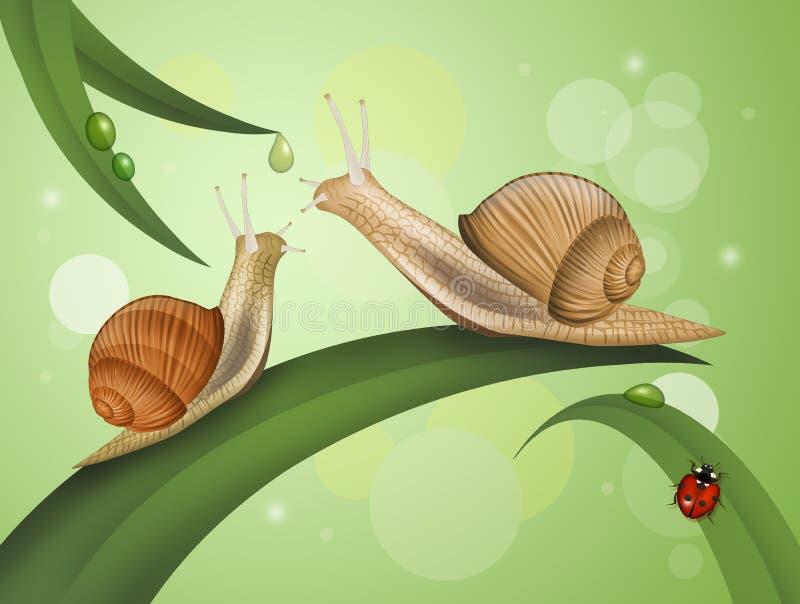 Twee slakken op de bladeren stock illustratie