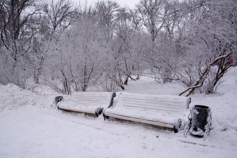 Twee snow-covered banken stock afbeelding