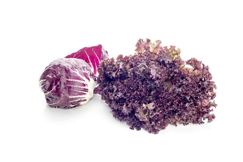 Twee soorten Italiaanse salade stock afbeelding