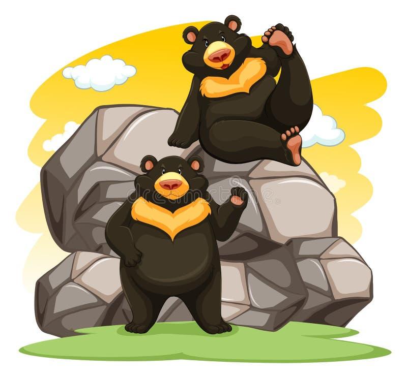 Twee speelse beren stock illustratie