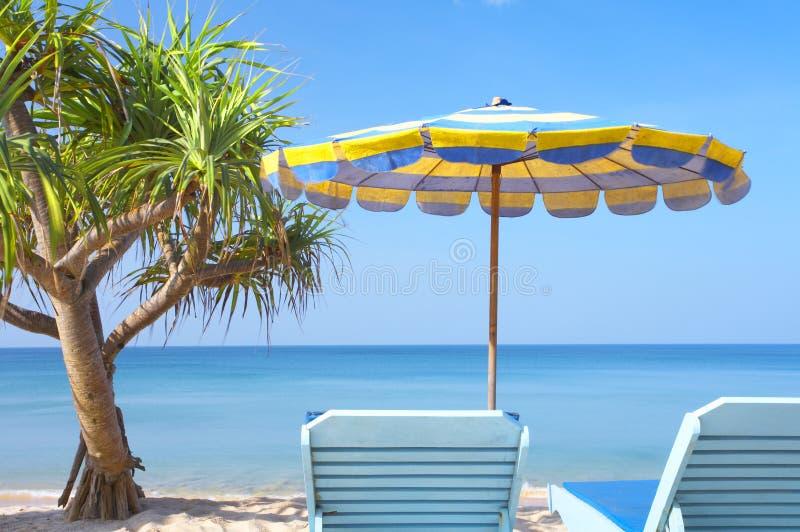Twee stoelen en mangrove royalty-vrije stock afbeelding