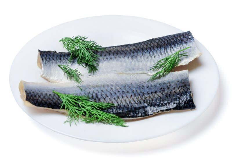 Twee stukken verse smakelijke Atlantische haringen op een witte die plaat met dille wordt verfraaid Witte achtergrond stock foto