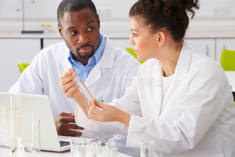 Twee Technici die in Laboratorium werken stock afbeelding