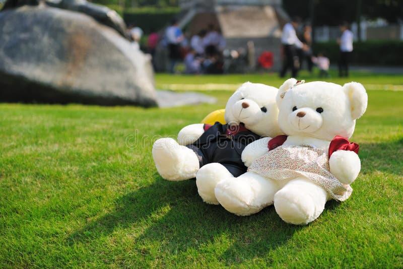 Twee teddyberen stock afbeeldingen