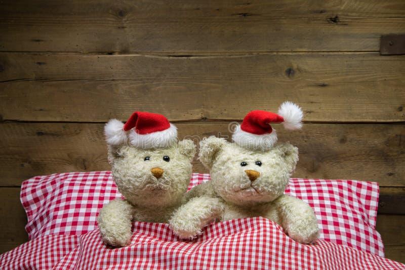 Twee teddyberen op Kerstmisvooravond: idee voor een grappige groetkaart royalty-vrije stock afbeeldingen