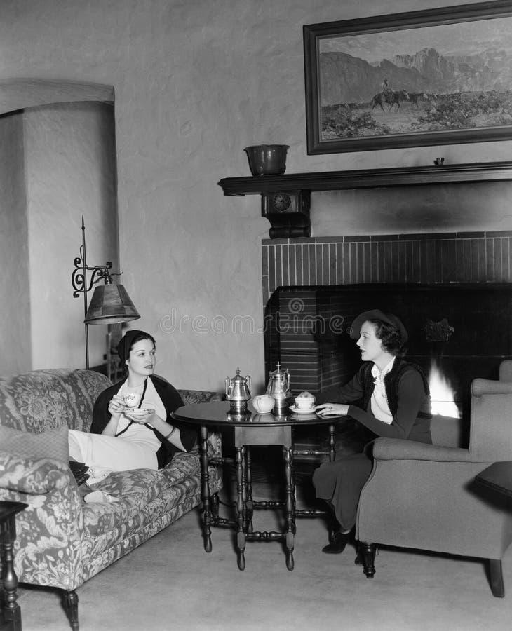 Twee thee drinken en vrouwen die (Alle afgeschilderde personen langer spreken leven niet en geen landgoed bestaat Leveranciersgar stock foto