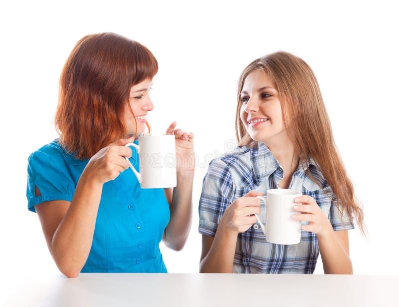 Twee tiener-meisjes drinken thee royalty-vrije stock foto