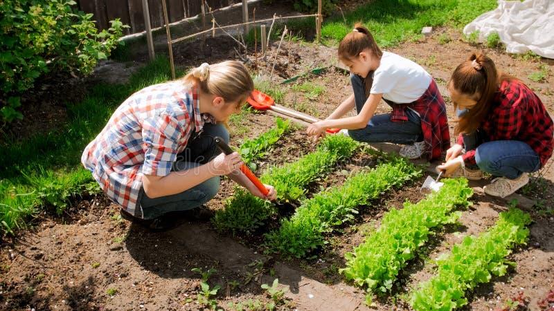 Twee tieners met moeder die in tuin werken royalty-vrije stock afbeeldingen
