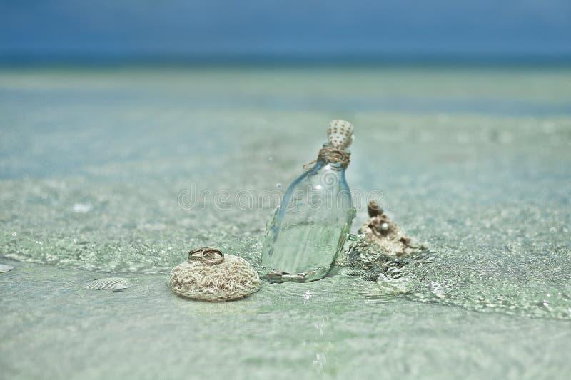 Twee trouwringen op de koraalsteen royalty-vrije stock foto