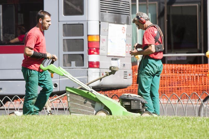 Twee tuinlieden snoeien het gras (Piazza Venezia - Rome) royalty-vrije stock afbeelding