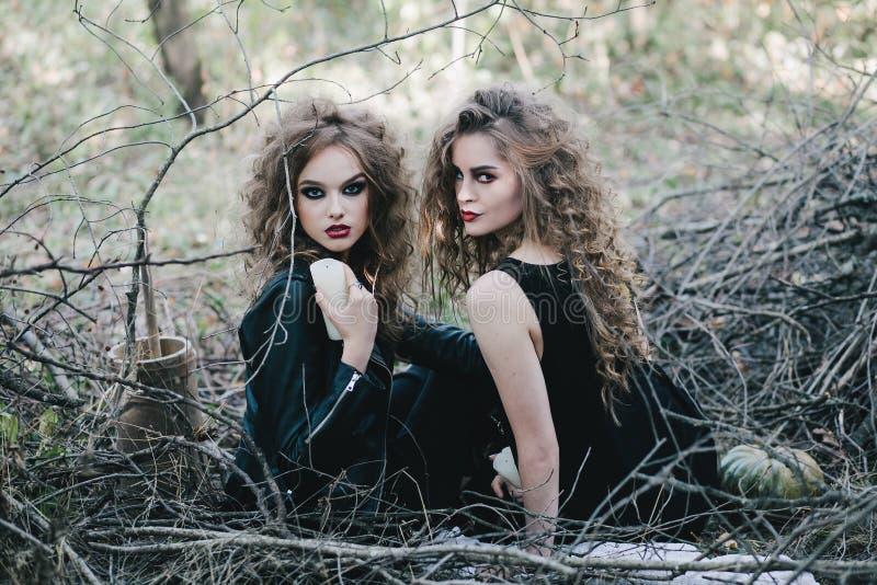 Twee uitstekende heksen verzamelde vooravond van Halloween royalty-vrije stock afbeeldingen