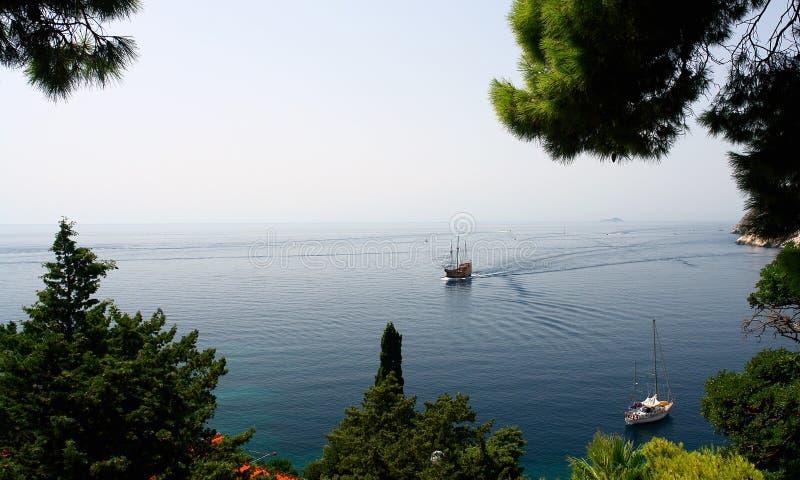 Twee varende boten die door sommige bomen worden gezien royalty-vrije stock afbeelding