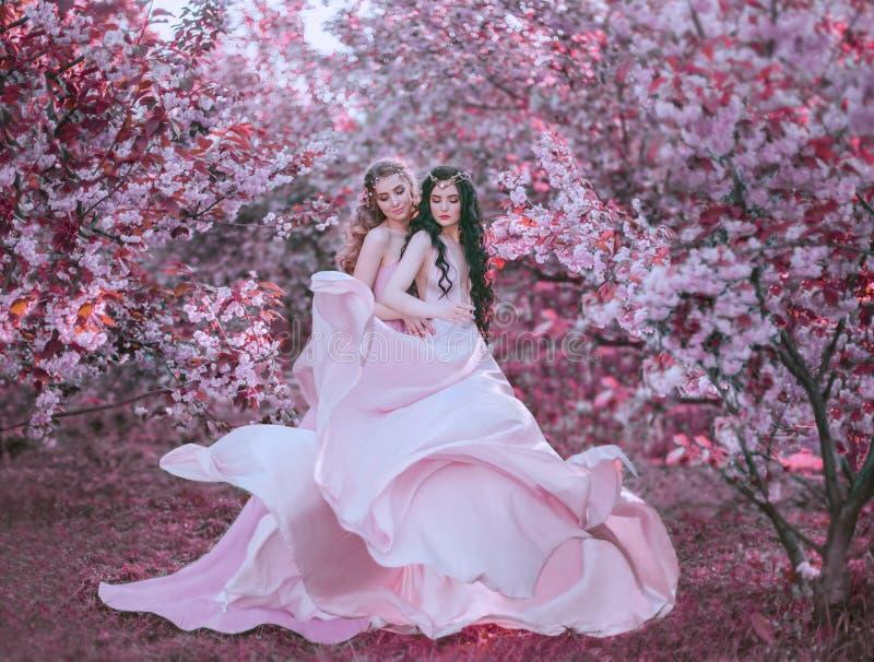 Twee verbazende elfgang in de fabelachtige tuin van de kersenbloesem De prinsessen in luxueus, lang, roze kleedt die opwinding stock foto