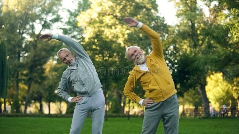 Twee verouderde gepensioneerden die ochtendoefeningen in park doen, geschiktheidsactiviteit, wellness royalty-vrije stock fotografie