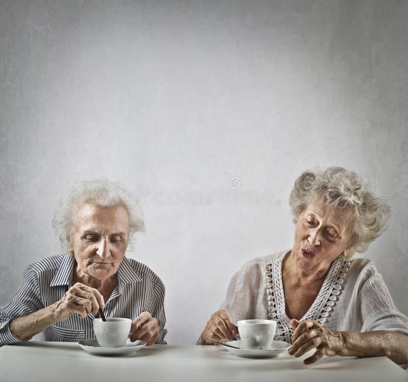 Twee verouderde vrouwen die thee drinken royalty-vrije stock foto