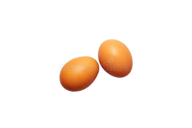 Twee verse eieren op een witte achtergrond stock foto's
