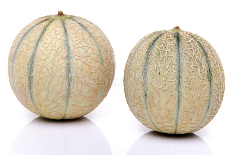 Twee verse meloenen royalty-vrije stock foto