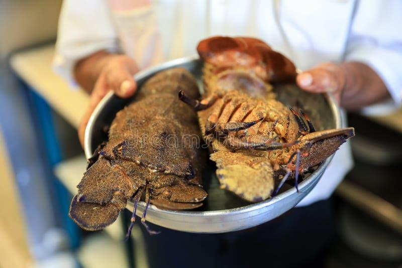 Twee verse Pantoffelzeekreeften of Kolohtipa op de kom in de keuken van de Griekse herberg stock foto's