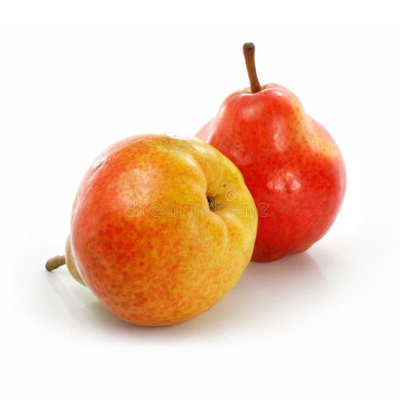 Twee verse perenvruchten die op wit worden geïsoleerd stock fotografie