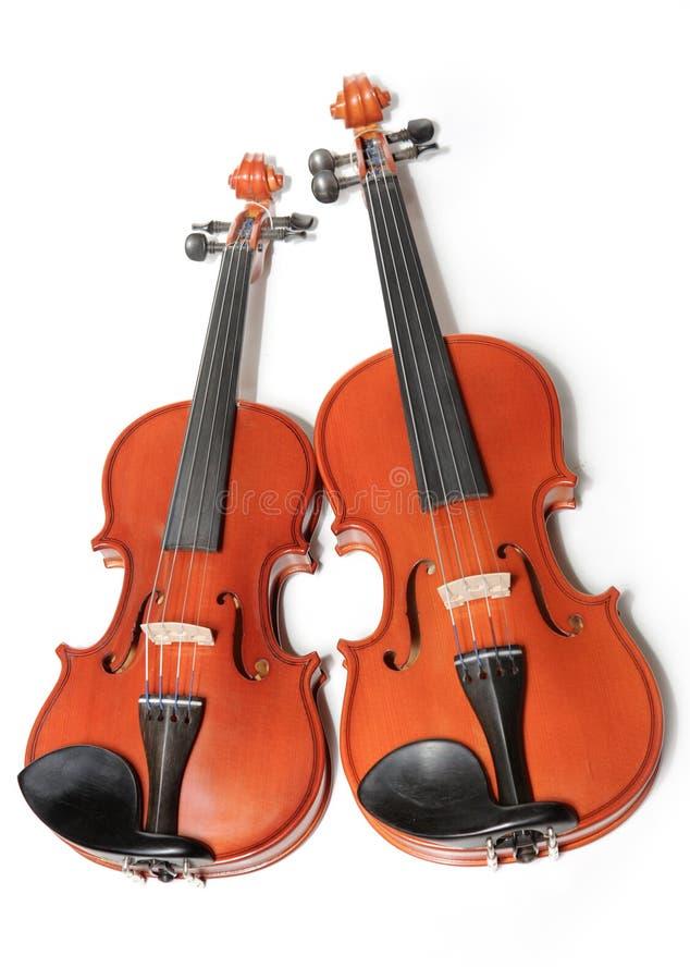Twee violen royalty-vrije stock afbeelding