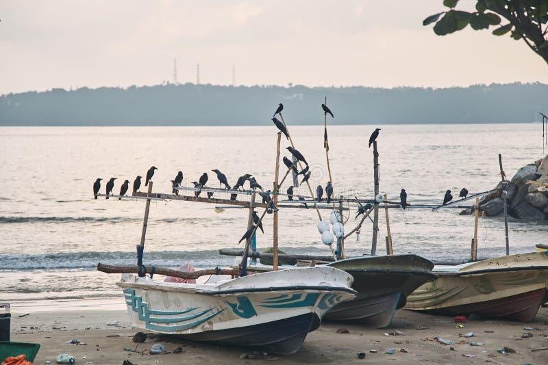 Twee vissersboten bij zonsondergang Stad van Halle, Sri Lanka stock foto