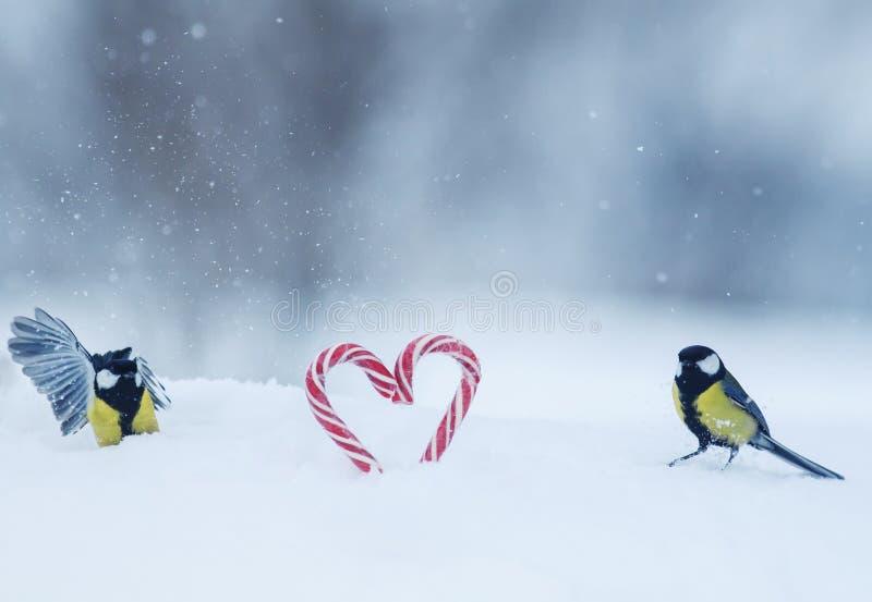 Twee vogelmezen vlogen aan zoete suikergoedlollys in de vorm van harten in de sneeuw op de dag van feestelijk Valentine stock foto's