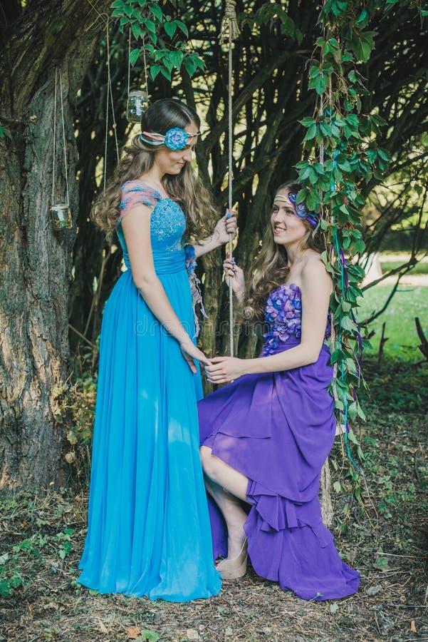 Twee volwassen zusters, tweelingen stock afbeelding