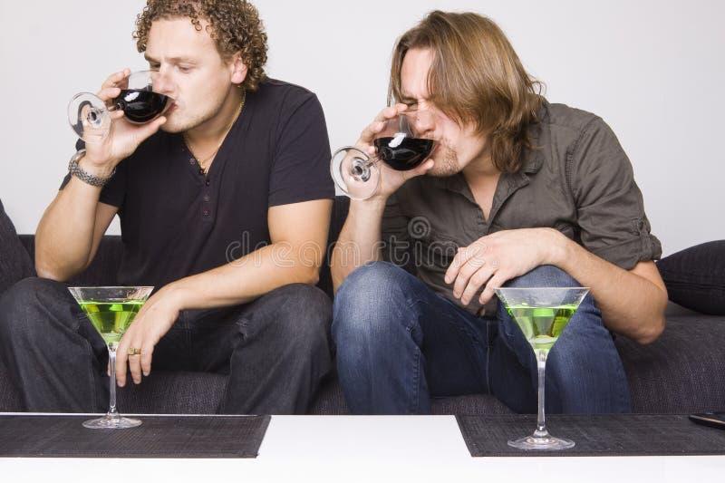 Twee vrienden die thuis drinken stock foto's