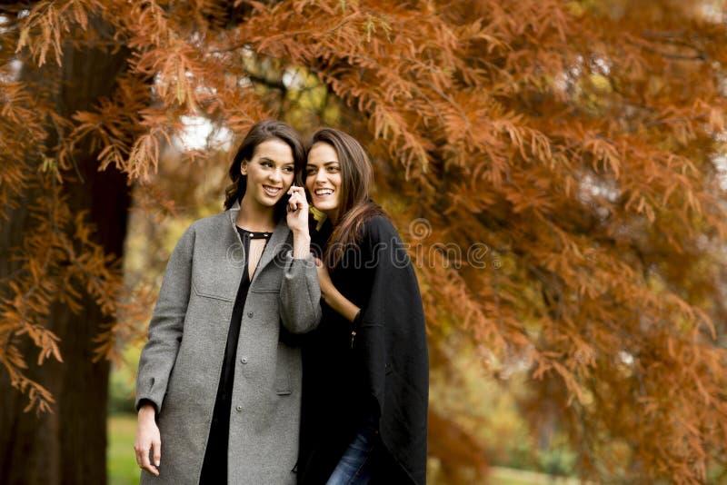 Twee vrij jonge vrouwen die mobiele telefoon met behulp van stock afbeeldingen