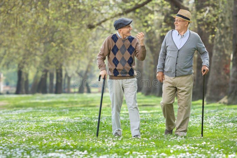 Twee vrolijke bejaarden die in een park lopen stock afbeeldingen