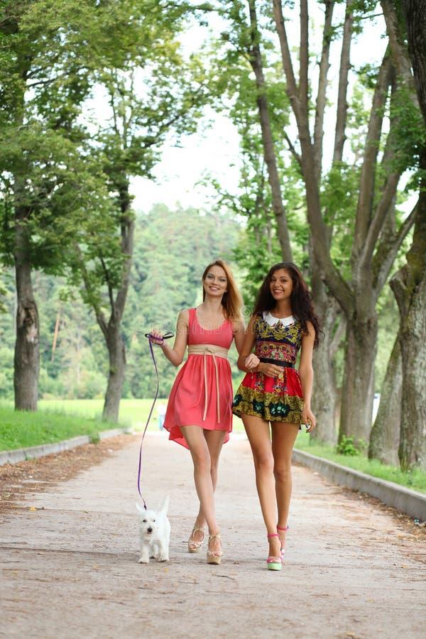 Twee vrolijke meisjes in de straat royalty-vrije stock foto