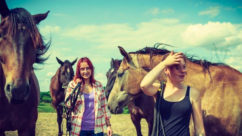 Twee vrouwen die met paarden op weide ontspannen stock foto