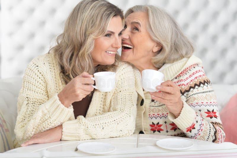 Twee vrouwen die thee drinken royalty-vrije stock foto