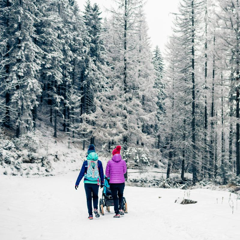 Twee vrouwen met babywandelwagen die van moederschap in de winterbos genieten stock afbeelding
