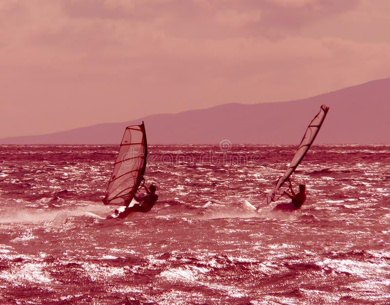 Twee windsurfers rennen bij schemer stock foto's