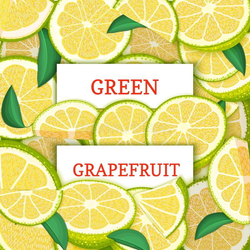 Twee wit rechthoeketiket op de groene achtergrond van het gfapefruitfruit Vectorkaartillustratie Citrusvrucht en tropische groen vector illustratie