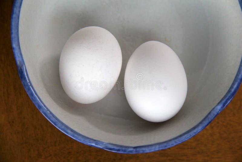 Twee witte eieren in blauw-omrande kom stock afbeeldingen