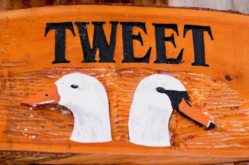 Twee witte ganzen op houten raad royalty-vrije stock foto's