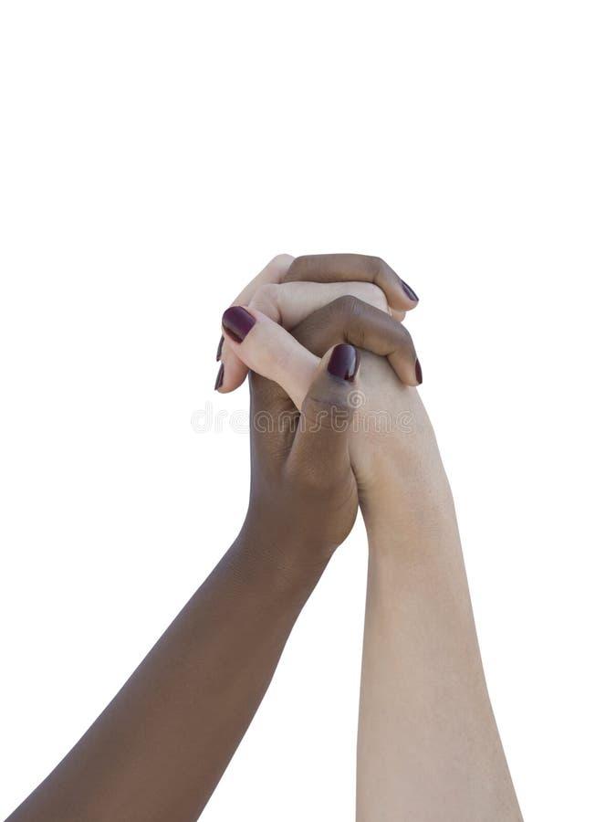 Twee women'handen die geïsoleerde liefde, vriendschap of solidariteit symboliseren, royalty-vrije stock afbeelding