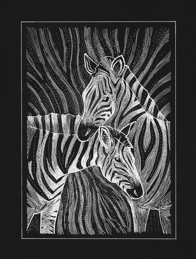 Twee zebras het trekken stock illustratie