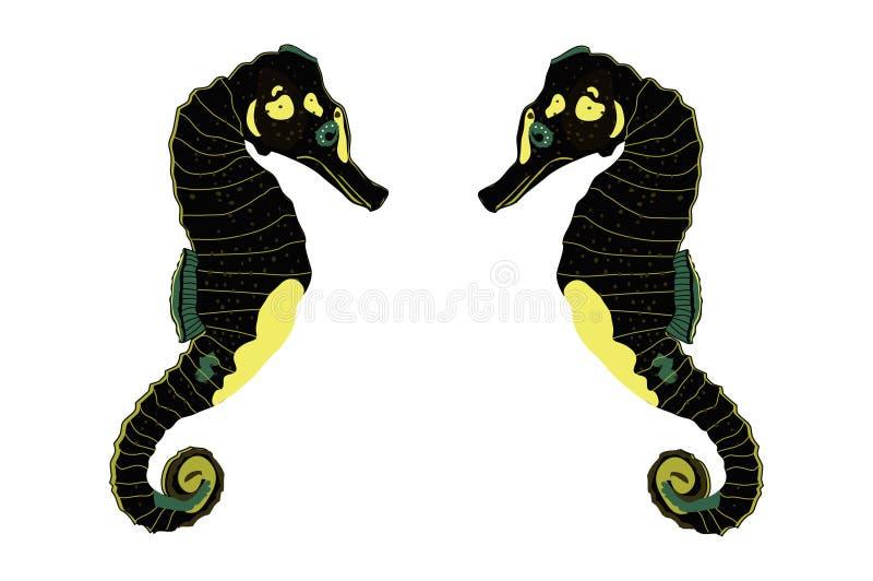 Twee Zeepaardjes vector illustratie