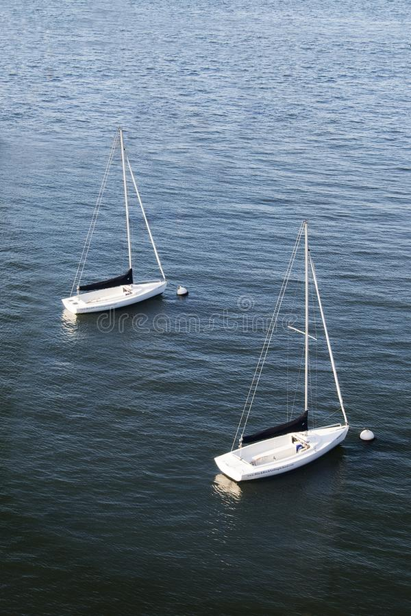 Twee zeilboten die in een haven in Boston, Massachusetts drijven stock fotografie