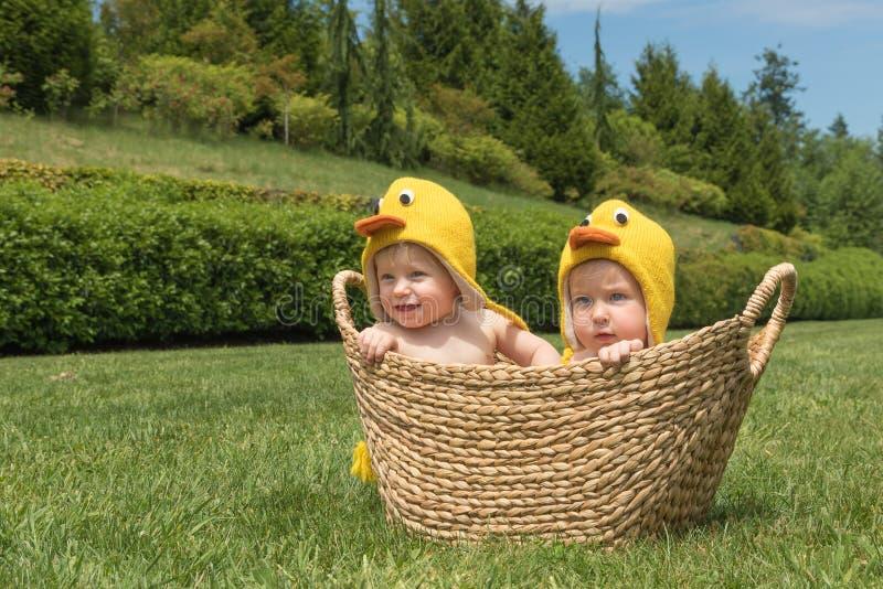 Twee zuigelingsbabys in Pasen-kippenkostuums binnen de mand op groen gras stock fotografie