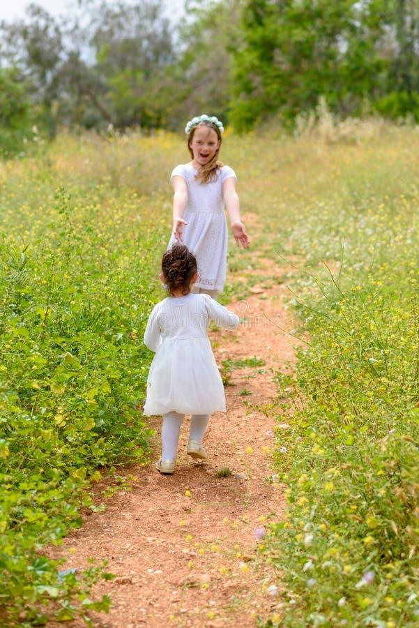 Twee zustermeisjes die het lopen op het groene park spelen openlucht stock foto
