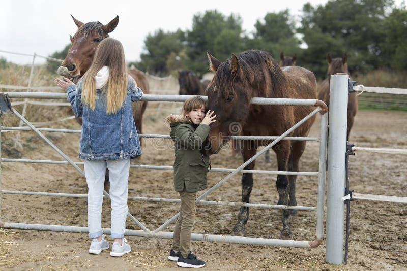 Twee zusters die paarden in een schuilplaats van Rojales spelen royalty-vrije stock afbeelding