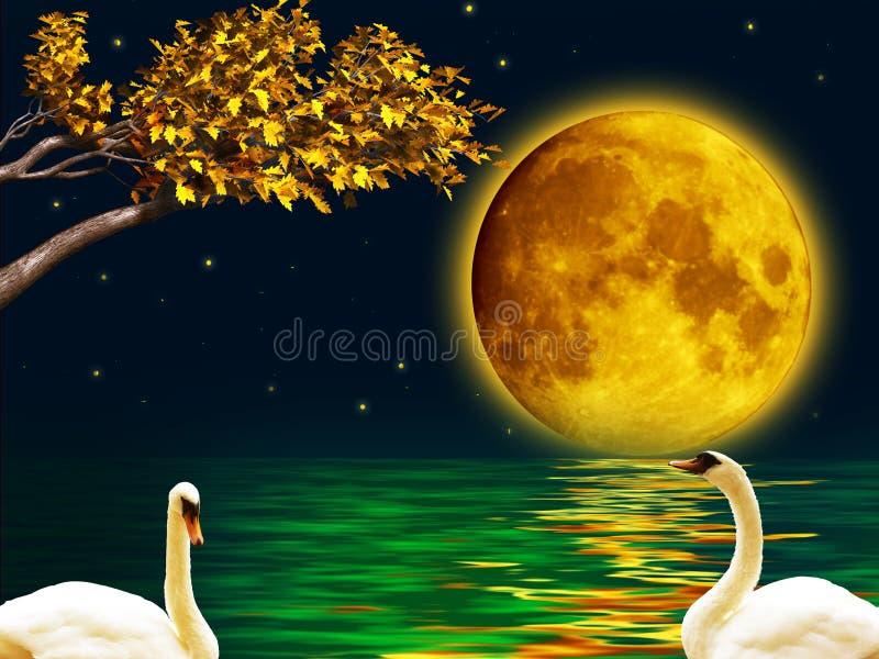 Twee zwanen in de volle maannacht vector illustratie