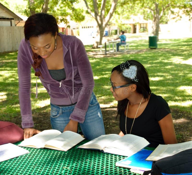 Twee zwarte tienerjaren bestuderen hun boeken bij het park stock afbeeldingen