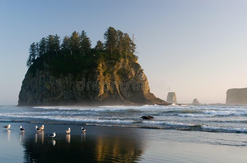 Tweede strand royalty-vrije stock foto
